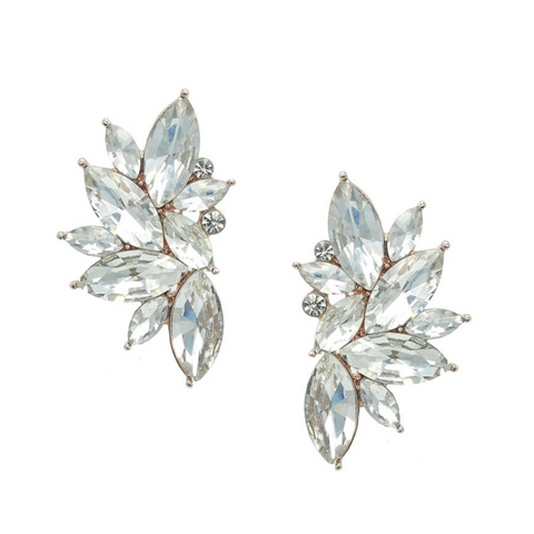 Helena Crystal Stud Earrings