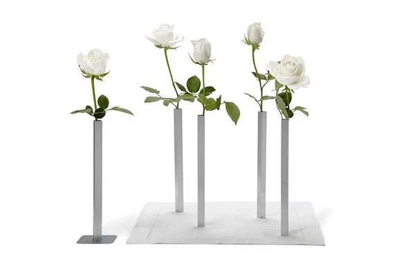 Magnetic Vases - Peleg Design