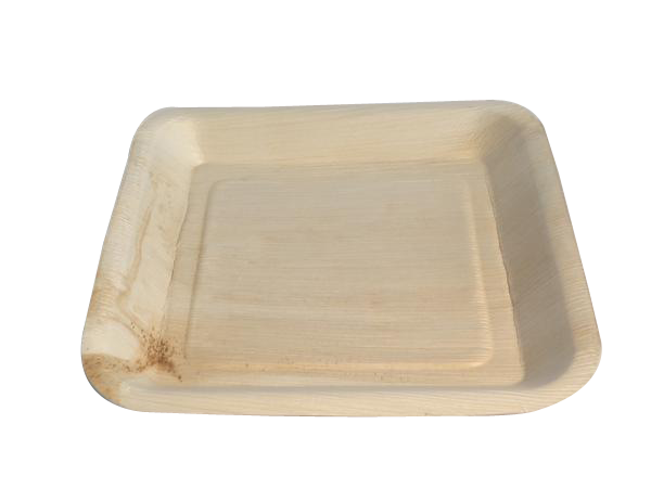 Palm Leaf Plates - 9.5 inch square