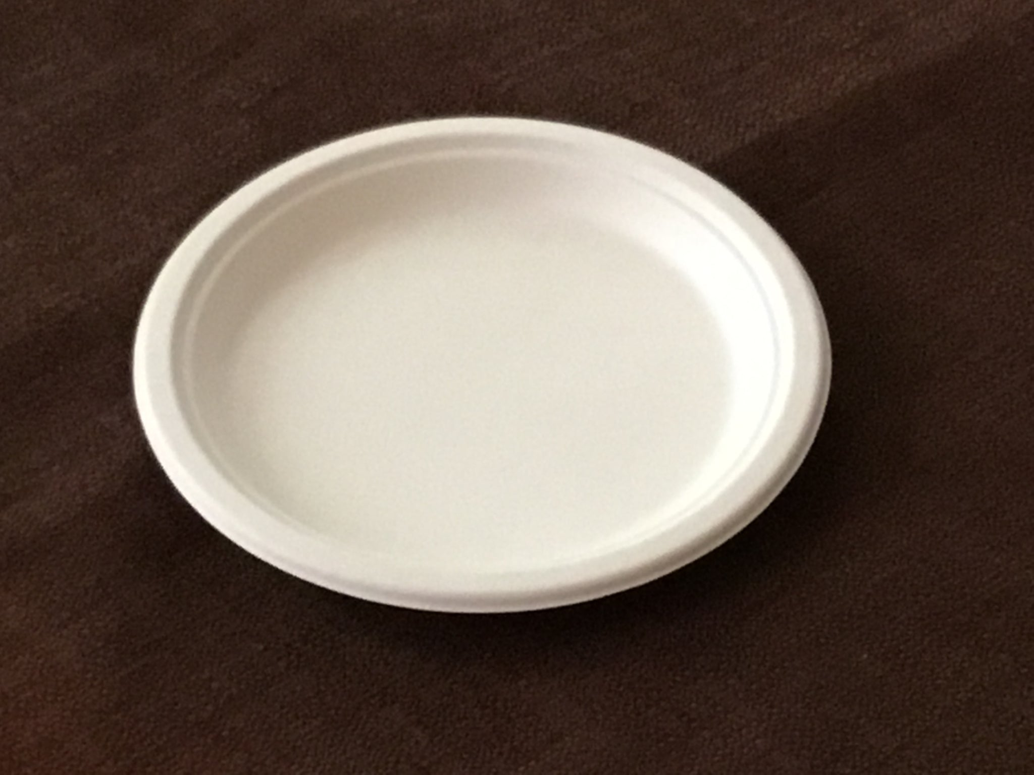 Terrahue 9 inch Round Plate, Biodegradable, Compostable