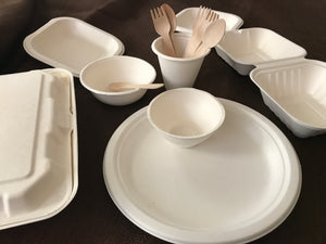 Free Sample- Sugarcane Bagasse items