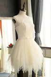 Mini Charming Tulle Short Ivory Backless Prom Dresses Homecoming Dresses For Girls OK307