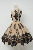 Elegant A-Line Scoop Sleeveless Tulle Vintage Style Homecoming Dress With Black Lace OK465