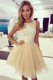 Champagne Prom Dresses,Tulle Homecoming Dress With Lace,Short Prom Dress,Champagne Homecoming Dress