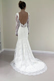 Custom Made Trumpet Mermaid Backless Long Sleeves Lace Wedding Dress OK197