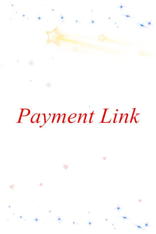 Payment Link-2