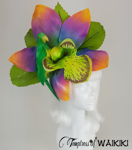 Giant Rainbow Orchid & bird Hat for sale, UK