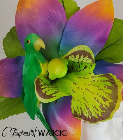 Giant Rainbow Orchid & Parrot Headpiece