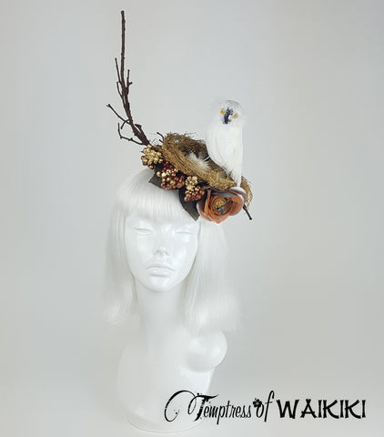 Owl Birds Nest Headpiece, ladies hats for sale UK