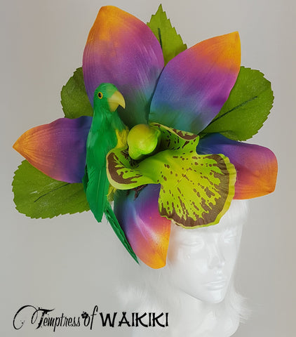 Giant Rainbow Orchid & Parrot Hat UK
