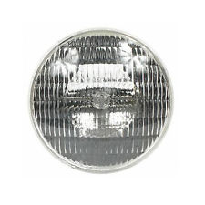 Halco 300W 12V Sealed Beam Bulb