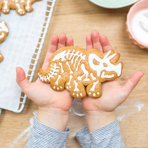 Dinosaur biscuit baking and craft kit