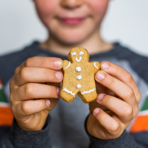 Mini Gingerbread biscuit kit