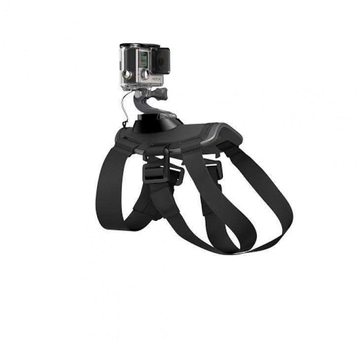 GoPro Fetch Dog harness - GoPro - KAMERAZ (6509054727)