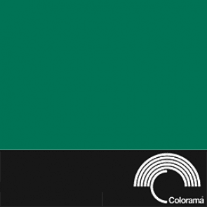 Colorama Backdrop - Spruce Green 37 - Colorama - KAMERAZ (467147915296)