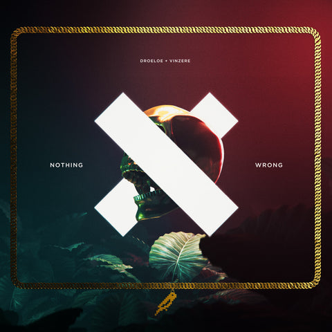 <b>Nothing Wrong</b><br />DROELOE x Vinzere