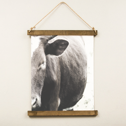 Canvas Hanging Print - Cow