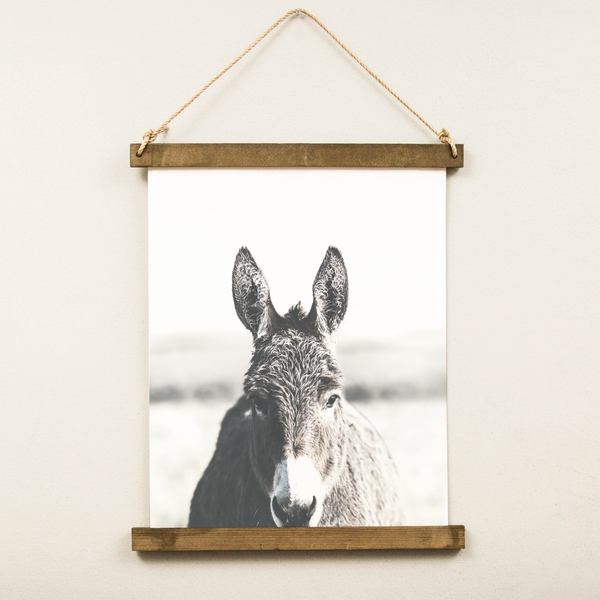 Canvas Hanging Print - Donkey [CLOSEOUT]