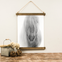 Canvas Hanging Print - Horse