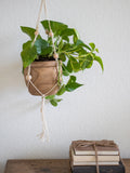 Wood Carving Plant Holder - Medium
