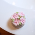 Cocoa Butter Bath Bomb - Japanese Cherry Blossom