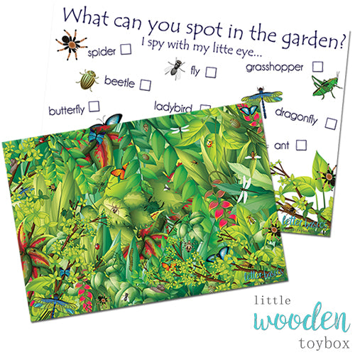 PRWD06. Bugs Alive I Spy Pre-Reading Activity - Digital Download