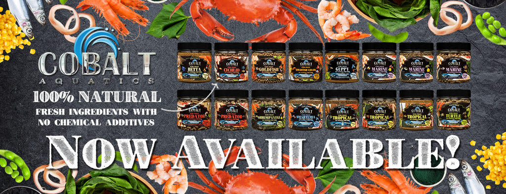 Cobalt Aquatics provides the best quality fish food and