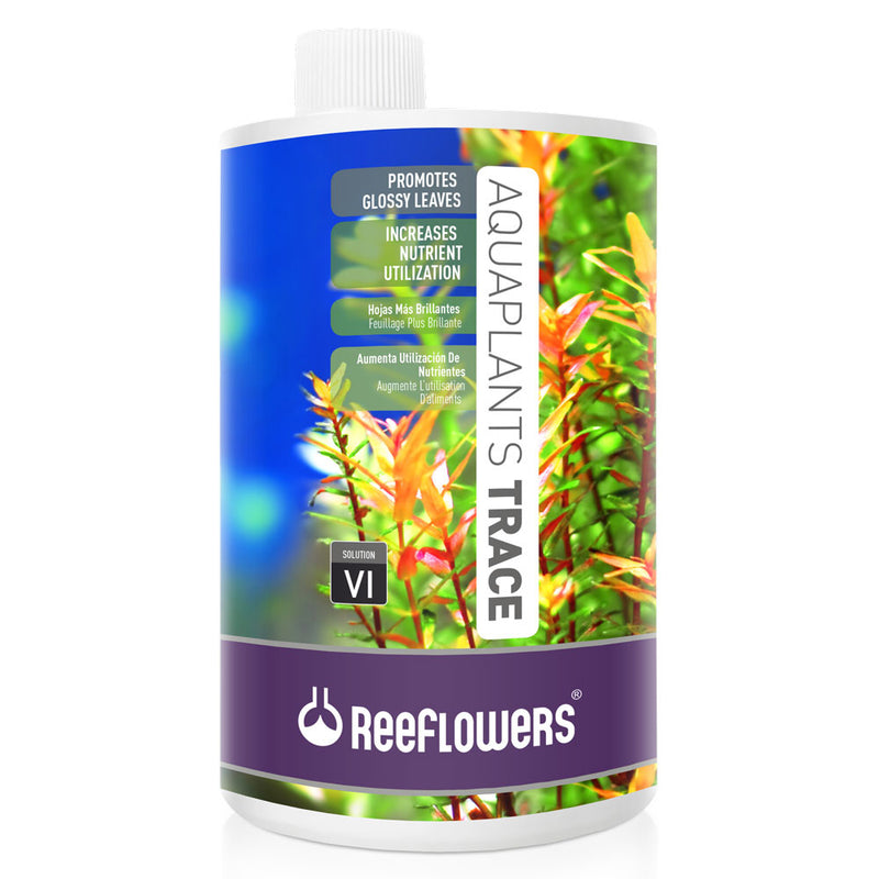 AquaPlants Trace - VI