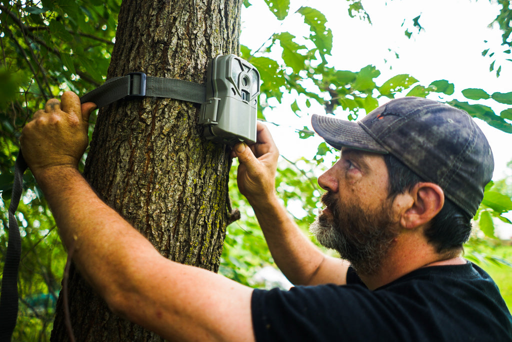 How High Should You Hang Your Trail Cameras?