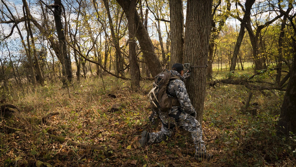 How To Ruin a Honey Hole With Trail Cameras