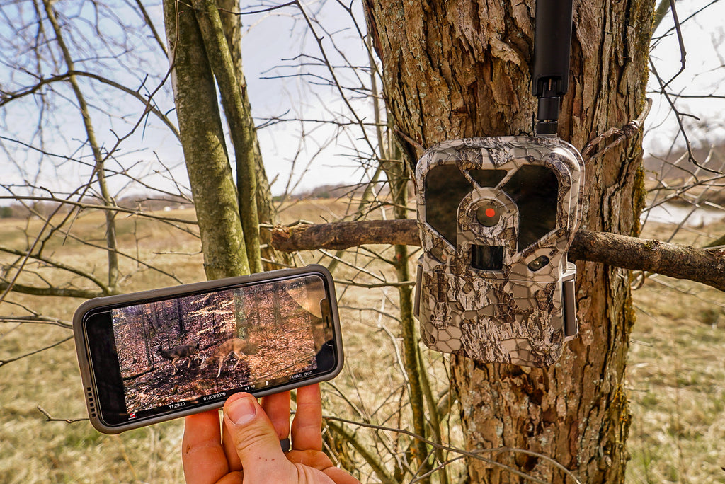 Trail Cameras That Send Pictures To Your Phone: The Technology Differences