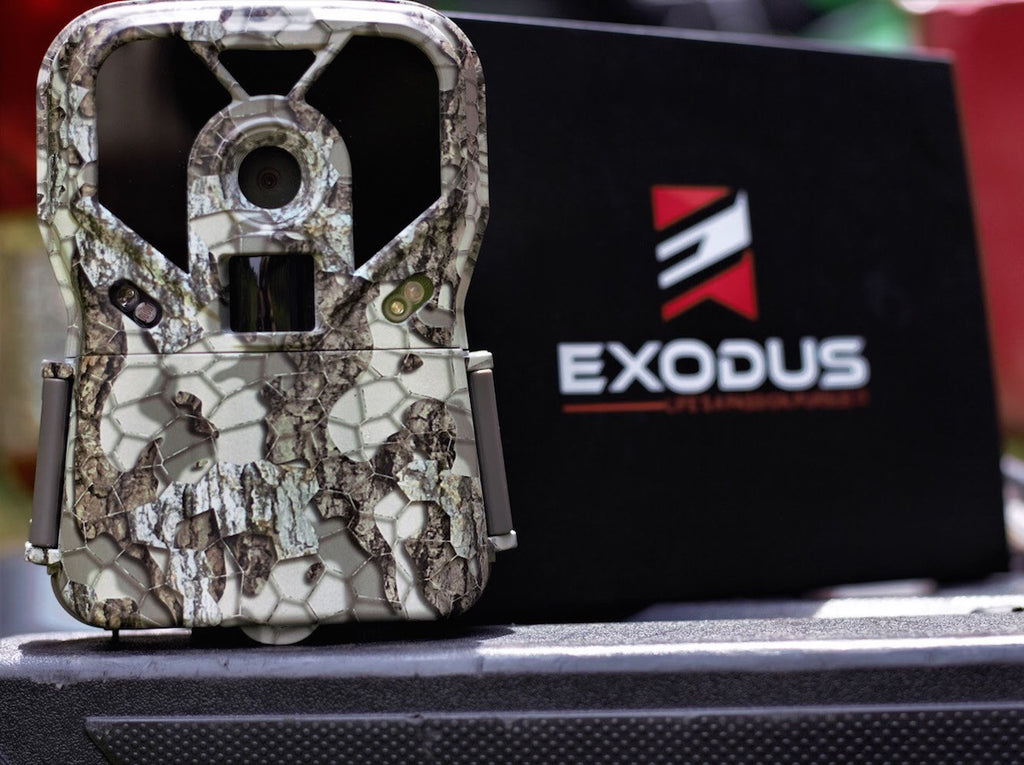 A Guide To Purchasing The Right Trail Camera for You