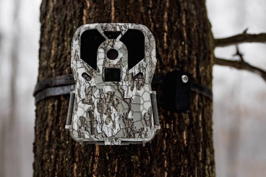 My Trail Camera Was Stolen, Now What?