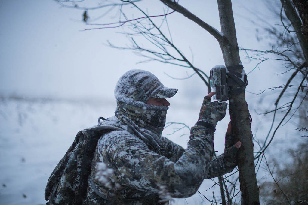 Making Sense of In Season Trail Camera Data
