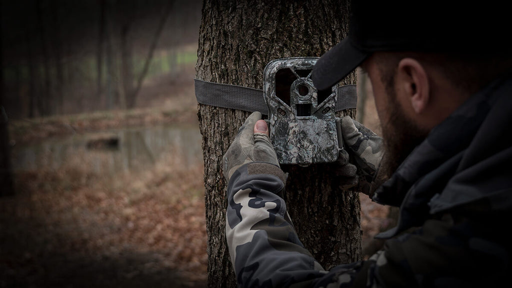 Tips and Tricks To Placing Trail Cameras on Field Edges