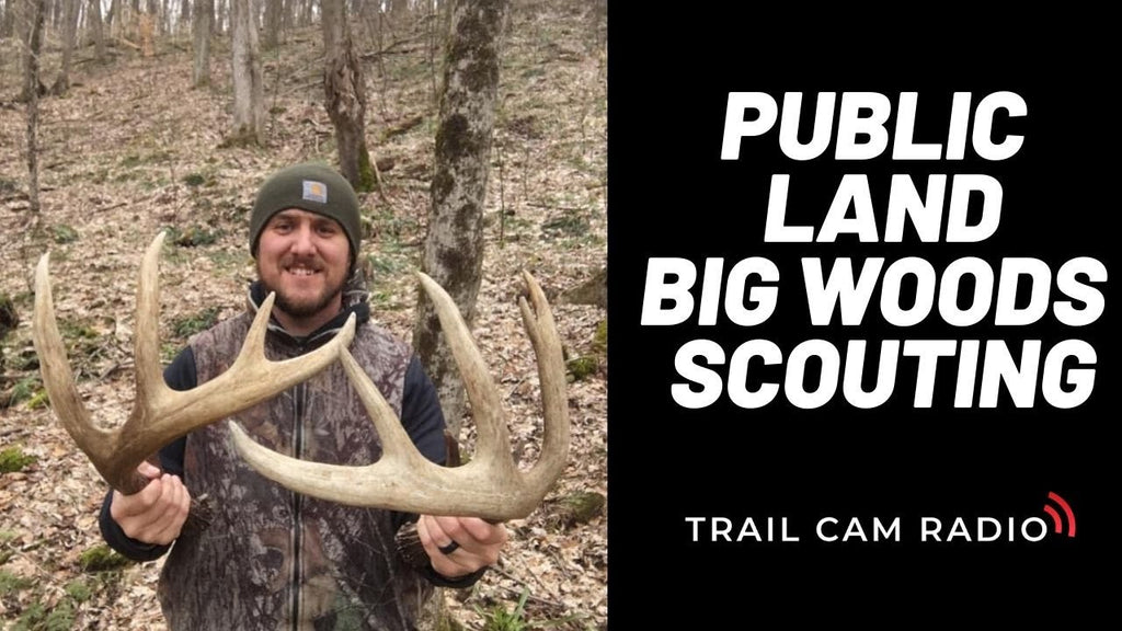 Postseason Scouting Pennsylvania Public Land Mountain Bucks With Steve Sherk