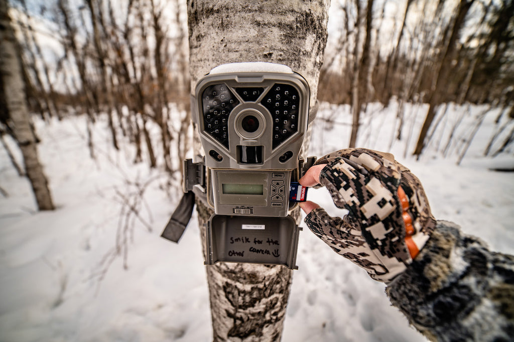 How Trail Cameras Can Help You Find More Sheds