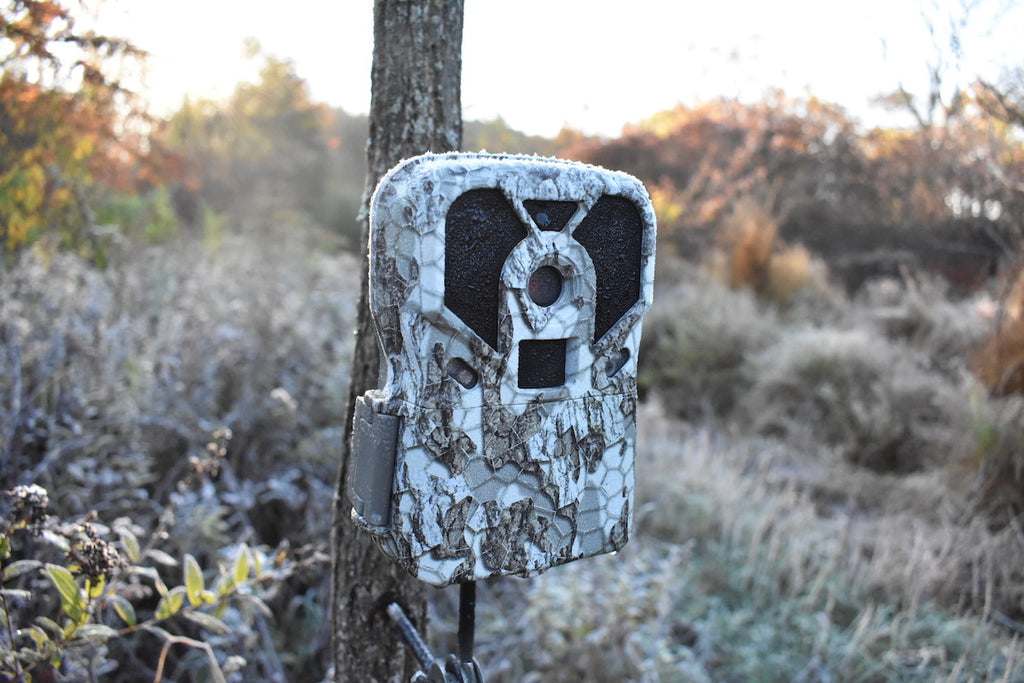 An In-Depth Look: How Trail Camera Detection Circuits Work