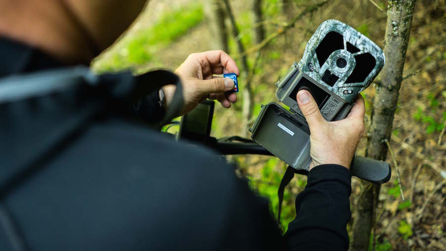 3 Strategies To Optimize Trail Cameras in The Spring