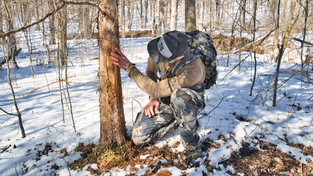 POST SEASON SCOUTING WITH BIG WOODS GUIDE STEVE SHERK