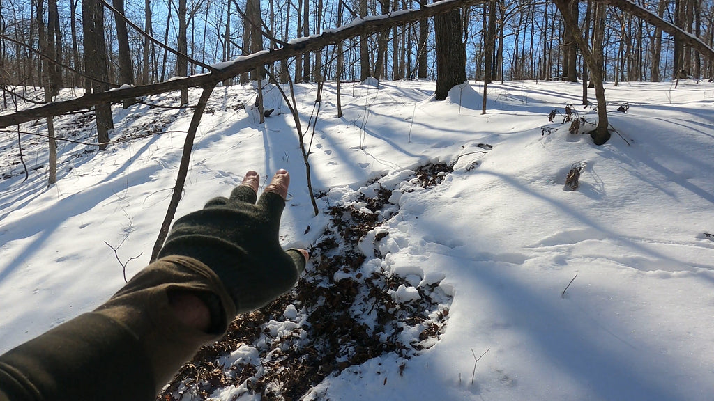 How to hunt deer with the wind