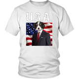Charles Cavalier King Charles USA - The Green Gypsie