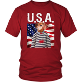 Donny Dachshund USA T Shirt - The Green Gypsie