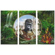 Albert Gorilla 3 Canvas Set - The Green Gypsie