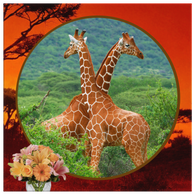 Lucy & Ricky Giraffe Square Canvas - The Green Gypsie