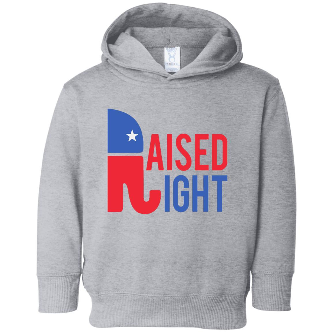Raised Right Toddler Hoodie