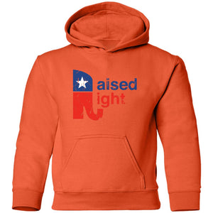 Raised Right Distressed Youth Hoodie