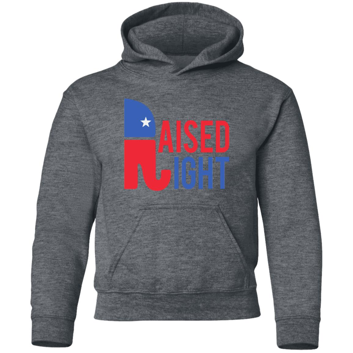 Raised Right Youth Hoodie