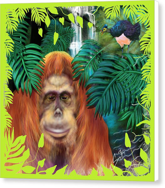 Orangutan With Maleo Bird - Canvas Print