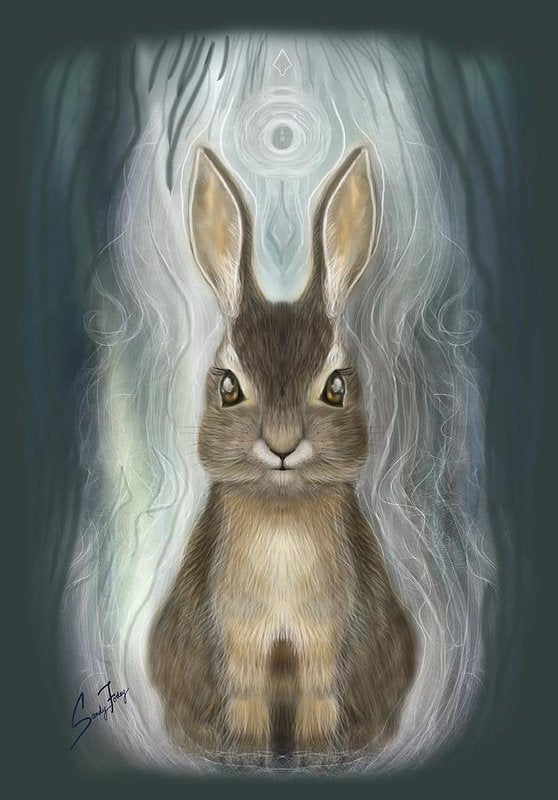 Rabbit Guide - Art Print